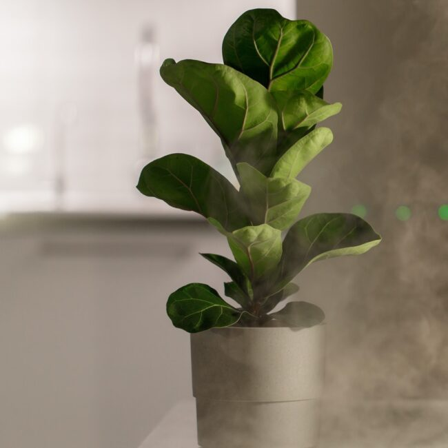 Hand turn on air humidifier on the table at home